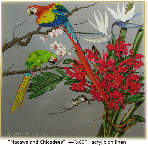 Macaws and Chicadees